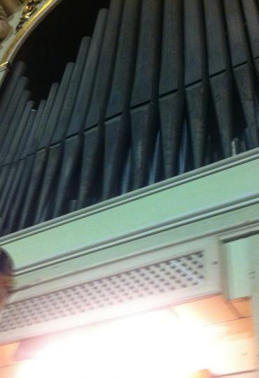 Ritratto di mcadario